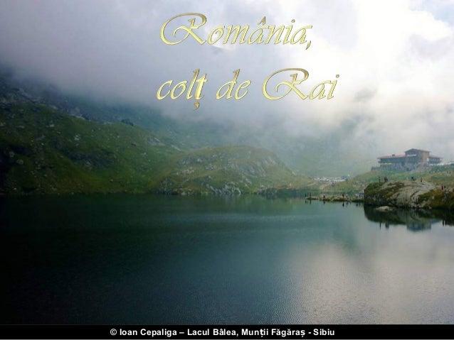 2012 09 14_www-nicepps-ro_15710_romania-colt_de_rai-copy