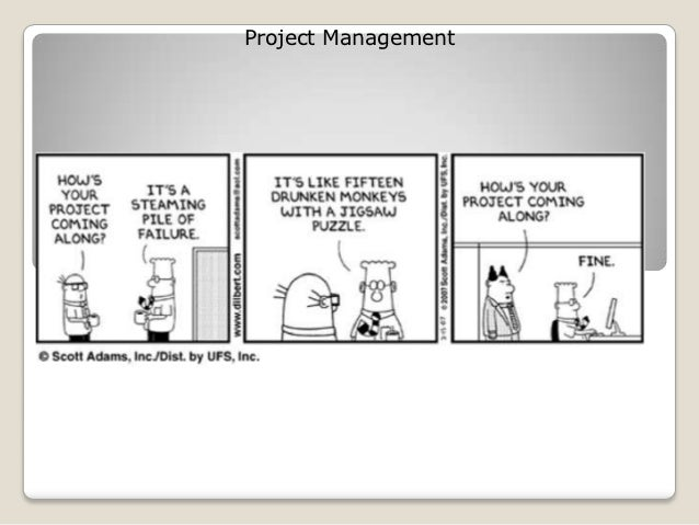 Project Management under PMI perspective
