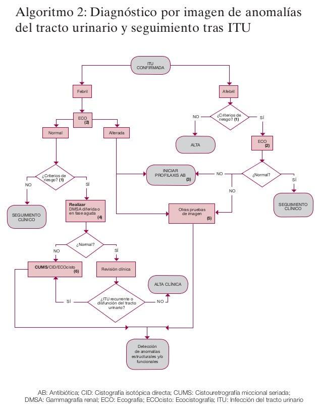 2012 ampap itu_diagnostico_imagen_algoritmo2