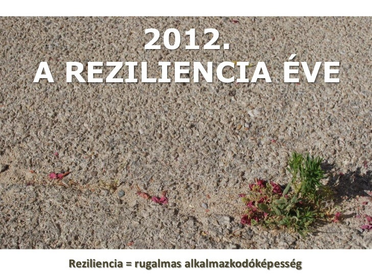 2012 a reziliencia éve