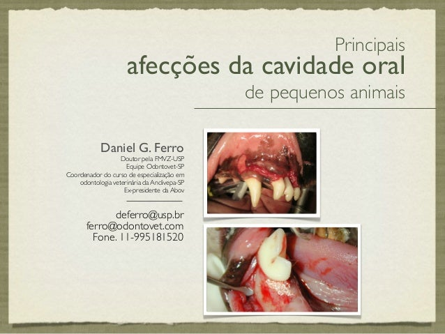 Principais                      afecções da cavidade oral                                              de pequenos animais...