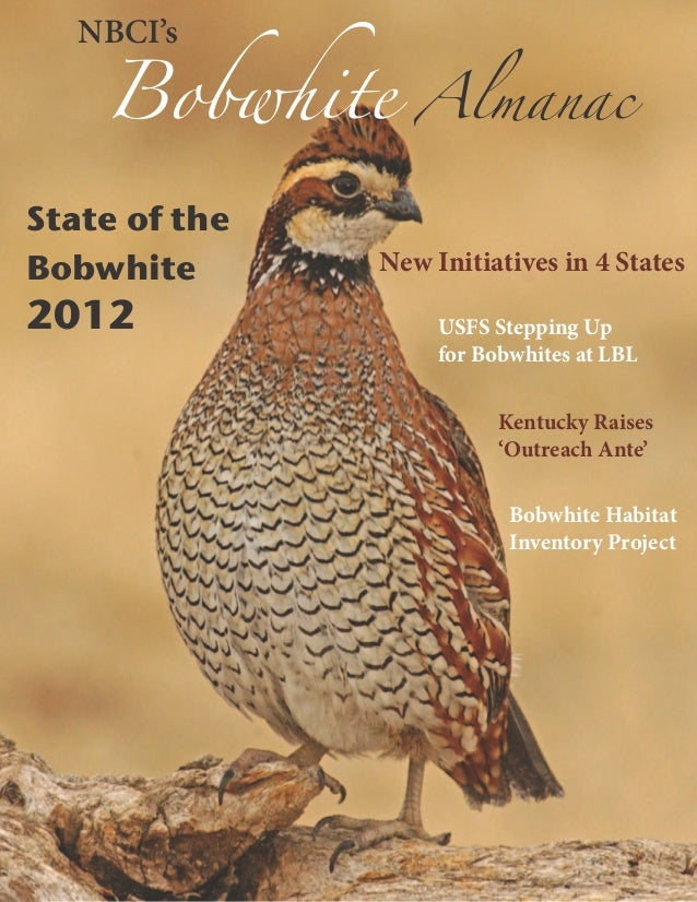 Bobwhite      Almanac   NBCI'sState of theBobwhite       New Initiatives in 4 States2012                USFS Stepping Up  ...