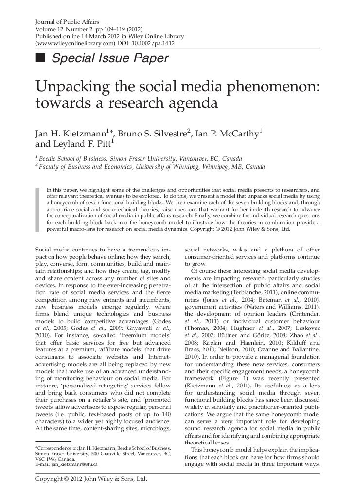 Unpacking the social media phenomenon: towards a research agenda