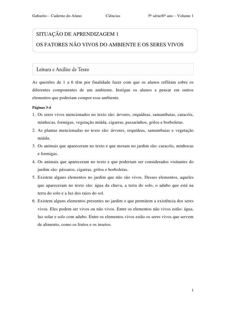 Gabarito – Caderno do Aluno                  Ciências          5ª série/6º ano – Volume 1  SITUAÇÃO DE APRENDIZAGEM 1  OS ...