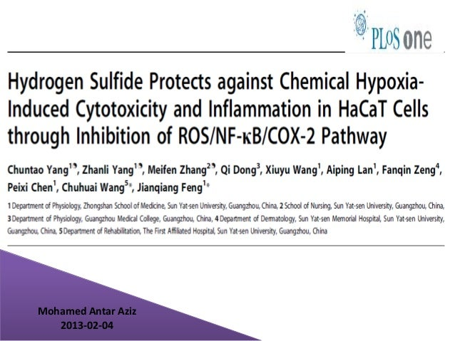 Hydrogen Sulfide Protects against Chemical Hypoxia-Induced Cytotoxicity and Inflammation in HaCaT Cells through Inhibition of ROS/NF-κB/COX-2 Pathway