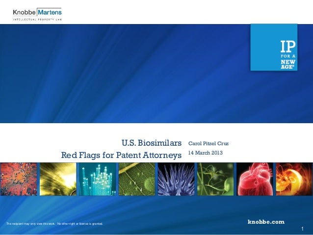 U.S. Biosimilars - Red Flags for Patent Attorneys