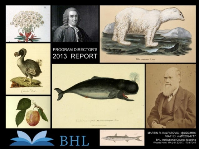 BHL Program Director's Report: 2013