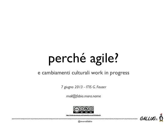 @morafabioperché agile?e cambiamenti culturali work in progress7 giugno 2013 - ITIS G. Fausermail@fabio.mora.namehttp://cr...