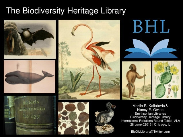 The Biodiversity Heritage LibraryMartin R. Kalfatovic &Nancy E. GwinnSmithsonian LibrariesBiodiversity Heritage LibraryInt...