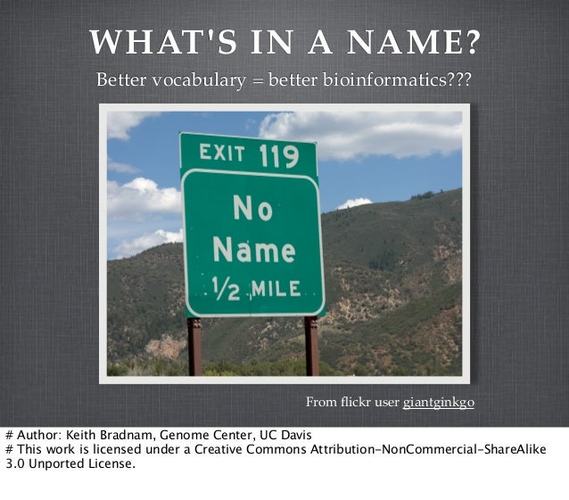 WHAT'S IN A NAME? Better vocabulary = better bioinformatics???  From flickr user giantginkgo # Author: Keith Bradnam, Genom...