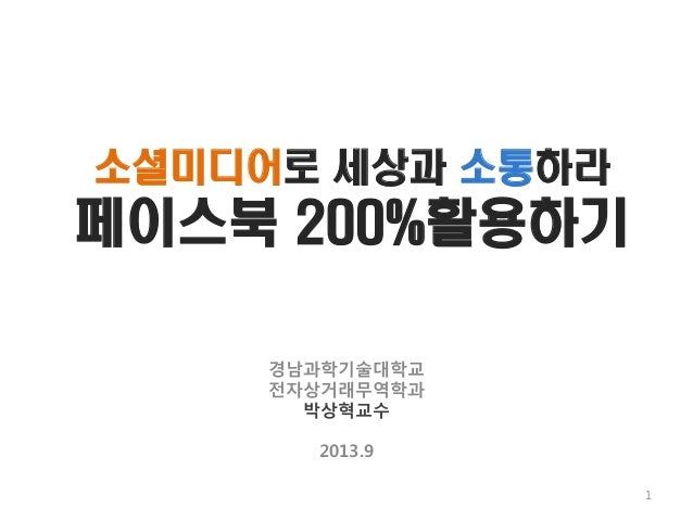2013소셜미디어
