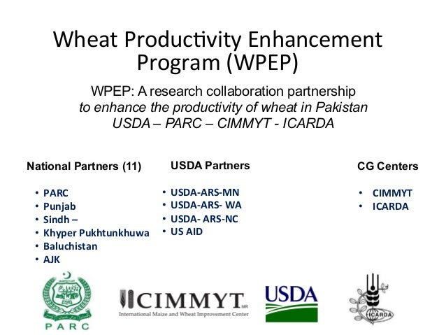 Wheat  Produc-vity  Enhancement   Program  (WPEP) WPEP: A research collaboration partnership to enhance the produc...