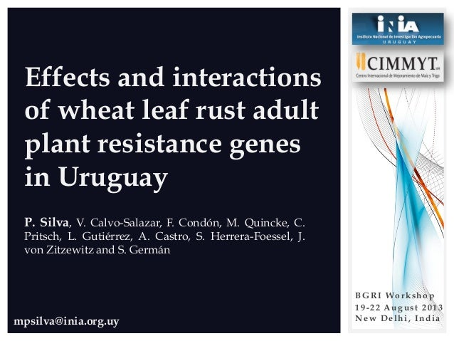 mpsilva@inia.org.uy Effects and interactions of wheat leaf rust adult plant resistance genes in Uruguay P. Silva, V. Calvo...