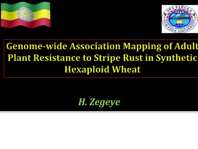 BGRI  Technical  Workshop     New  Delhi,  India,  19-‐22  August  2013   H.  Zegeye