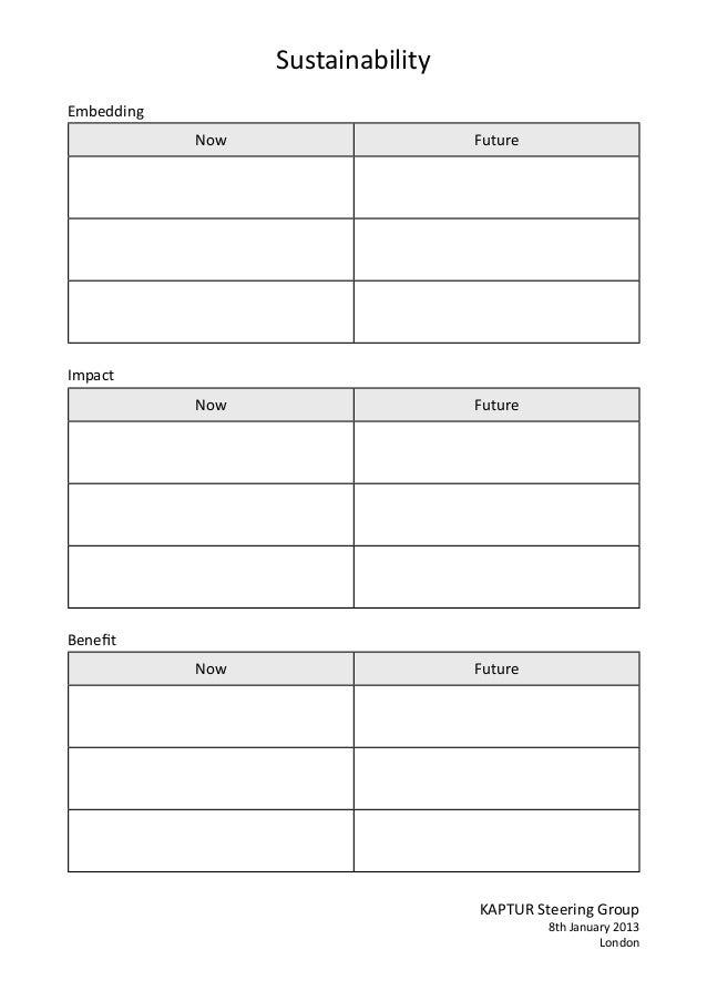 20130108 kaptur sustainability-worksheet-lg
