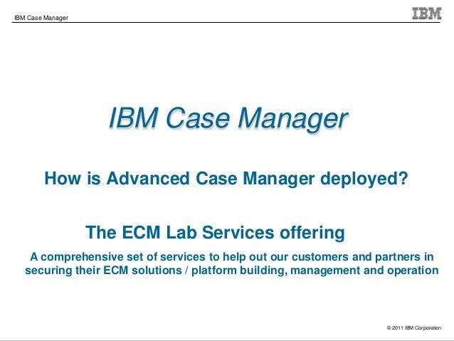 2013 06 04_5806_case_manager_implementation__(1)