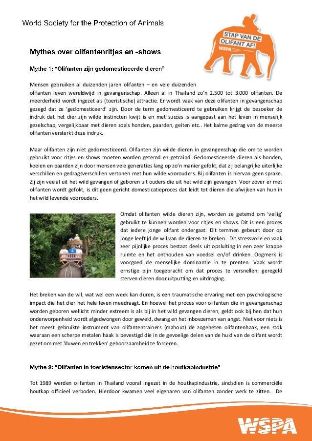 20130612 mythes achter olifantenritjes def docx