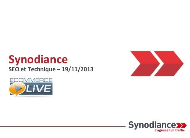 Synodiance  SEO et Technique – 19/11/2013
