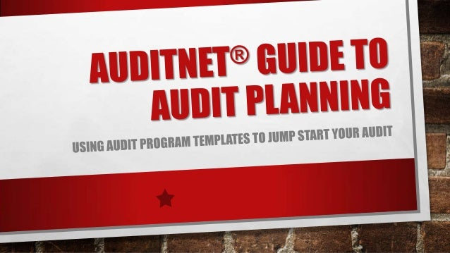 2013 audit net guide to audit planning