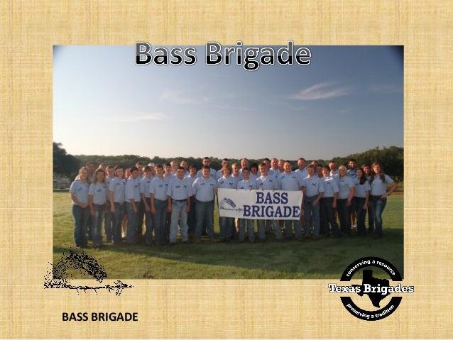 2013  bass cadet power point