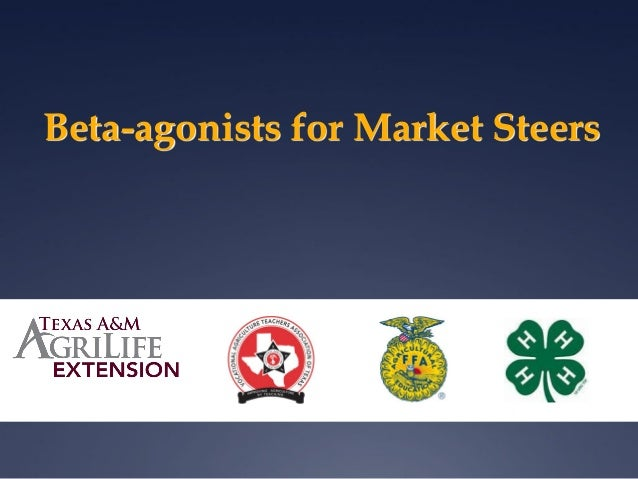 Beta-agonists for Market Steers