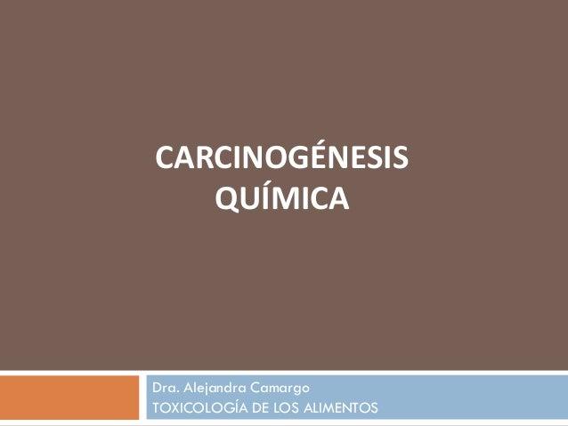 Dra. Alejandra Camargo TOXICOLOGÍA DE LOS ALIMENTOS CARCINOGÉNESIS QUÍMICA