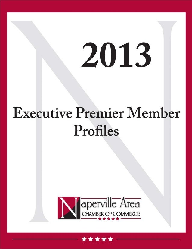 2013 ceo profiles
