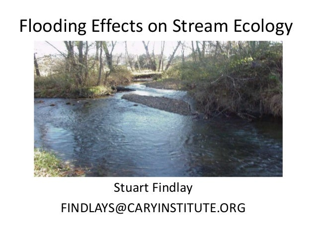 Flooding Effects on Stream EcologyStuart FindlayFINDLAYS@CARYINSTITUTE.ORG