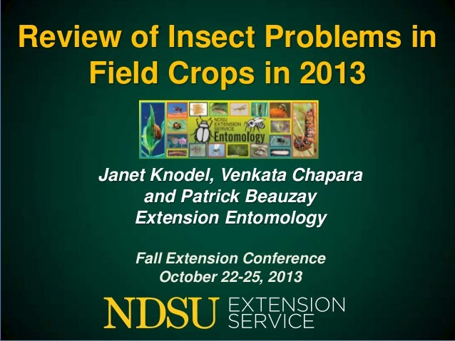 2013 insect update fall ext conf jan compressed