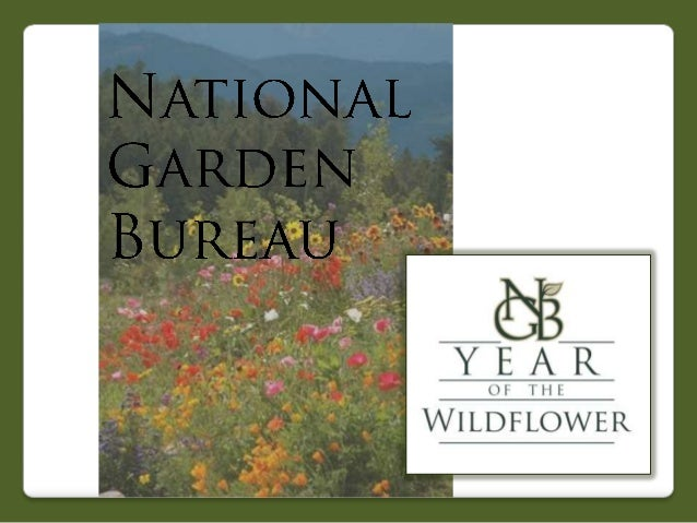 2013 National Garden Bureau Year of the Wildflower