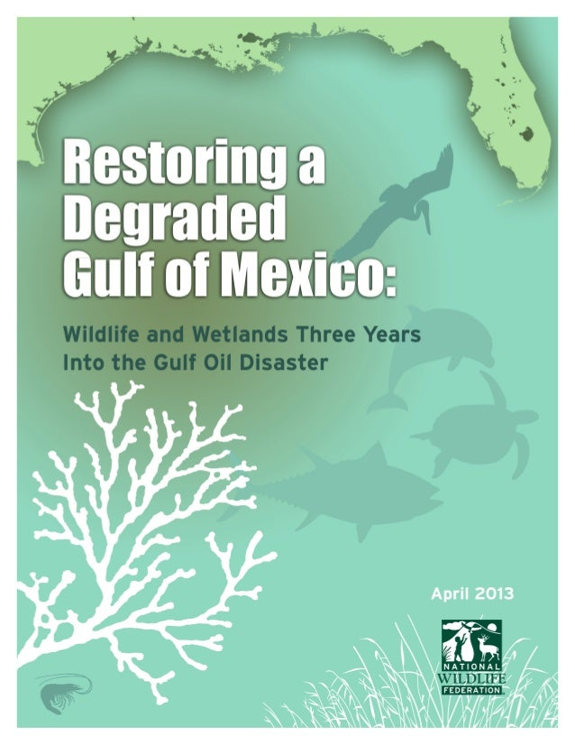 Restoring a Degraded Gulf of Mexico