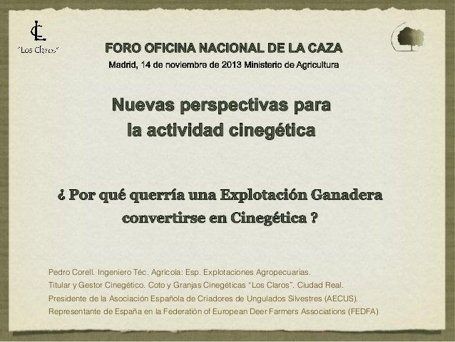 2013 onc magrama presentaci+¦n pedro corell
