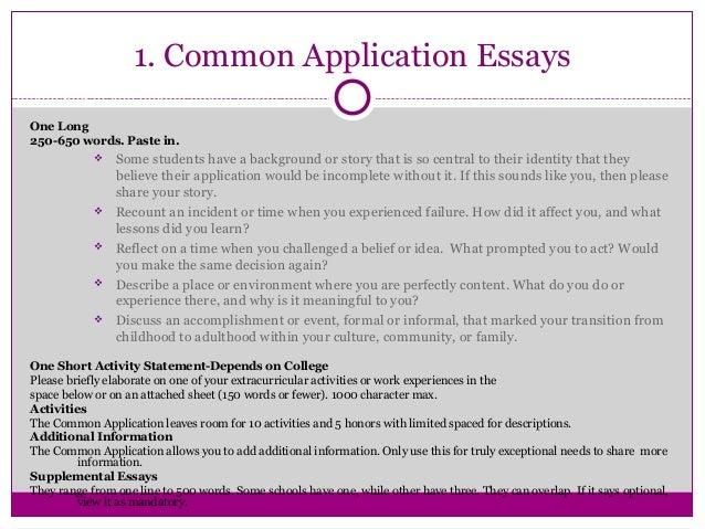 common app 2010 essay