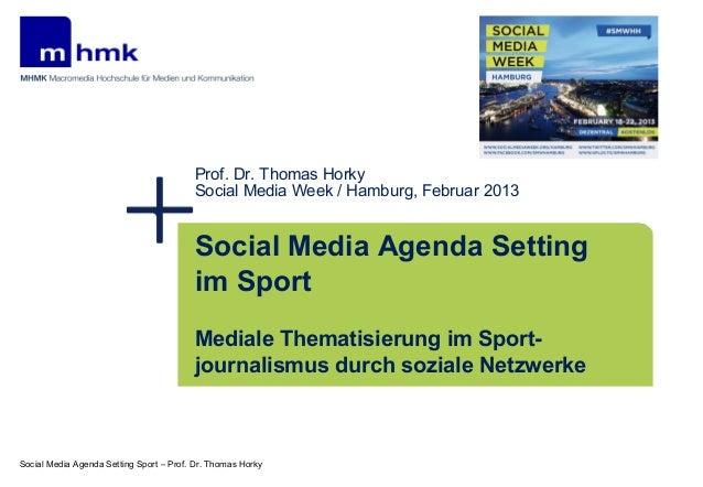 2013 social media agenda setting sport   horky