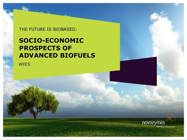 THE FUTURE IS BIOBASED:SOCIO-ECONOMICPROSPECTS OFADVANCED BIOFUELSWFES