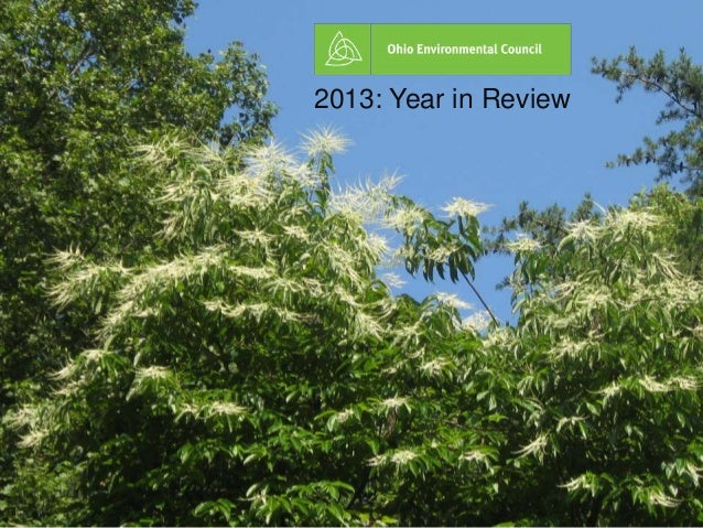 2013 yearinreview