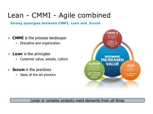 agile project management essay