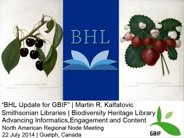 2006 BHL is created 10 US and UK partners