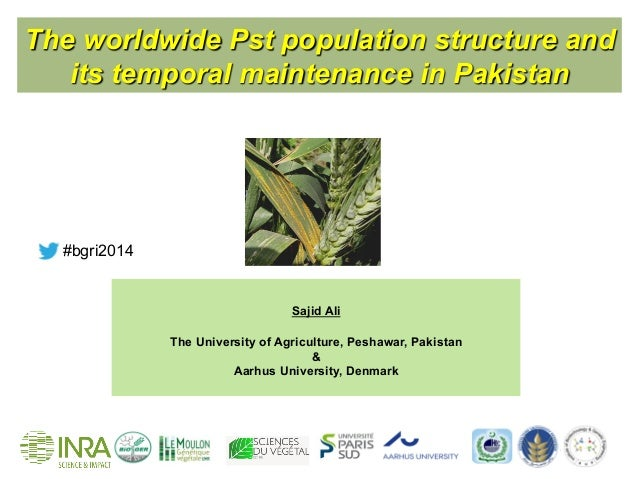 The worldwide Pst population structure and its temporal maintenance in Pakistan Sajid Ali The University of Agriculture, P...