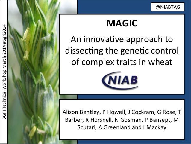 MAGIC      An  innova(ve  approach  to   dissec(ng  the  gene(c  control   of  complex  traits  ...