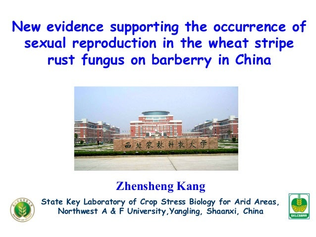New evidence supporting the occurrence of sexual reproduction in the wheat stripe rust fungus on barberry in China Zhenshe...