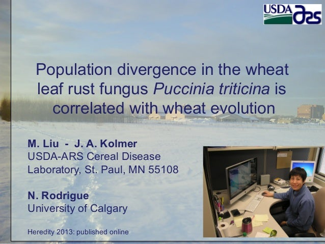 Population divergence in the wheat leaf rust fungus Puccinia triticina is correlated with wheat evolution M. Liu - J. A. K...