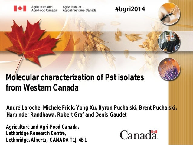 Molecular characterization of Pst isolates from Western Canada André Laroche, Michele Frick, Yong Xu, Byron Puchalski, Bre...