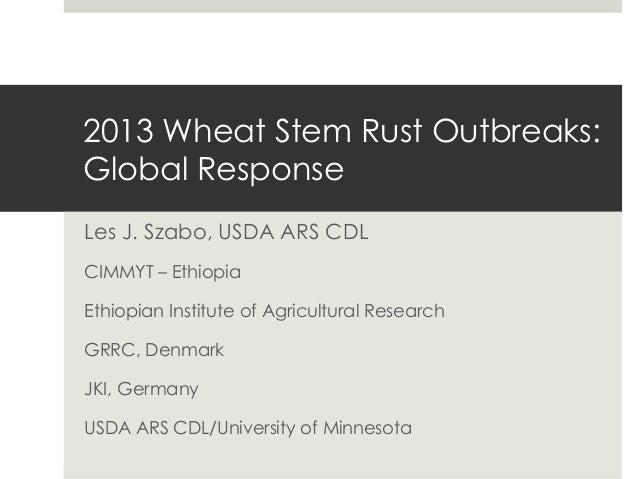 2013 Wheat Stem Rust Outbreaks: Global Response Les J. Szabo, USDA ARS CDL CIMMYT – Ethiopia Ethiopian Institute of Agricu...