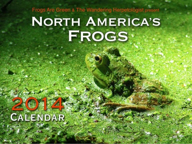 North America's Frogs 2014 Calendar