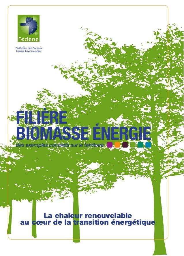 Fédération des Services Énergie Environnement FILIÈRE BIOMASSE ÉNERGIE SEITOSEI-Mars2014 28 rue de la Pépinière - 75008 Pa...