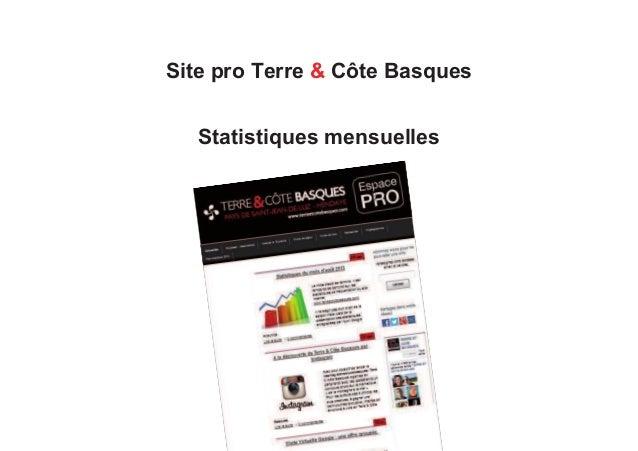 Site pro Terre & Côte Basques Statistiques mensuelles