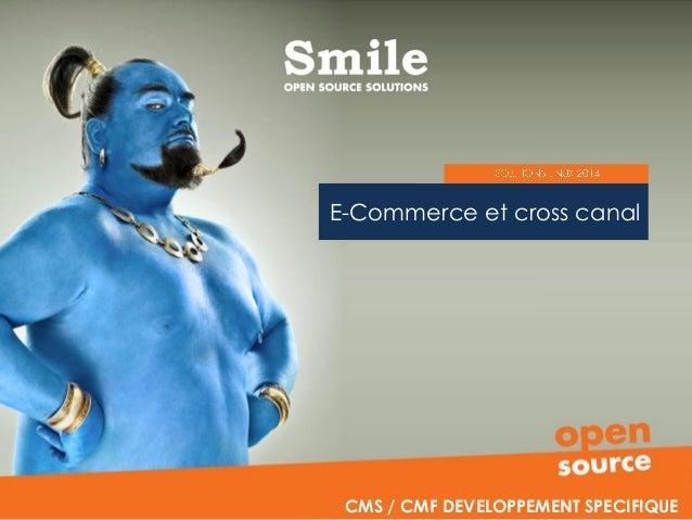 E-Commerce et cross canal CMS / CMF DEVELOPPEMENT SPECIFIQUE