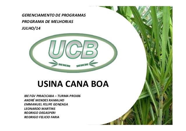 USINA CANA BOA GERENCIAMENTO DE PROGRAMAS PROGRAMA DE MELHORIAS IBE FGV PIRACICABA – TURMA PROJ06 ANDRÉ MENDES RAMALHO EMM...