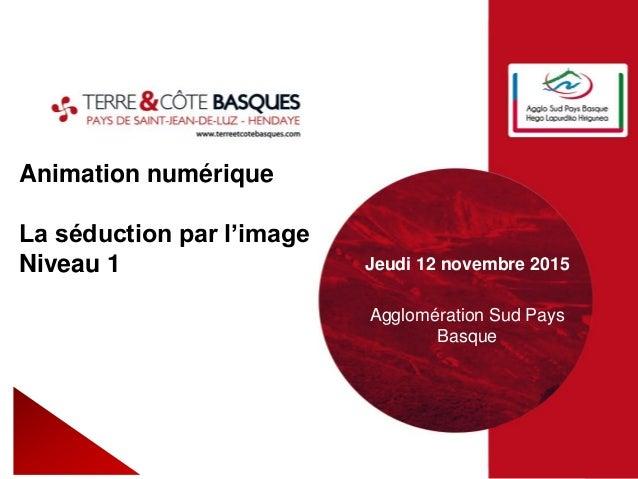 Animation numérique La séduction par l'image Niveau 1 Jeudi 12 novembre 2015 Agglomération Sud Pays Basque